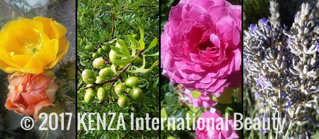 Natural Beauty ©2017 KENZA International Beauty