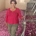 Fresh and Dry Roses at the distillery