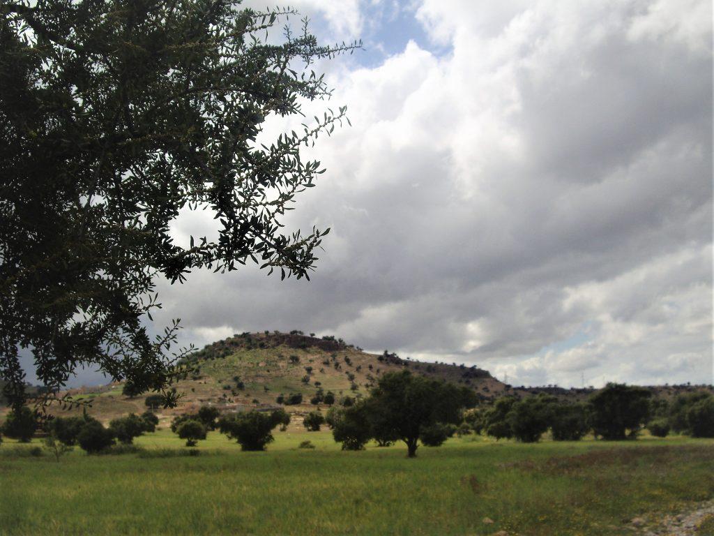Argan Road